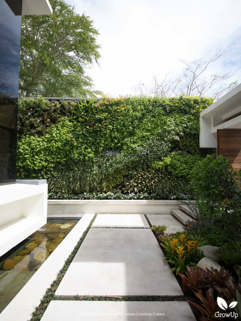 A greenwall in the backyard of a home with a pathway leading up to it