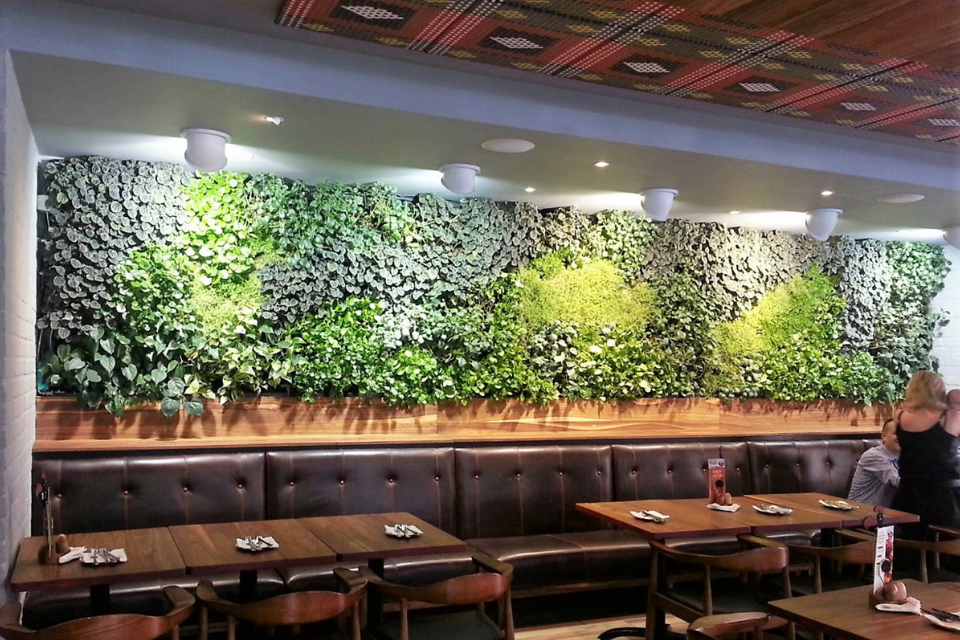 A greenwall inside a restaurant above booth tables