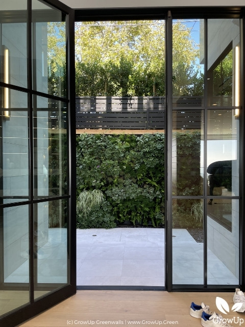 large greenwall viewed through glass doors