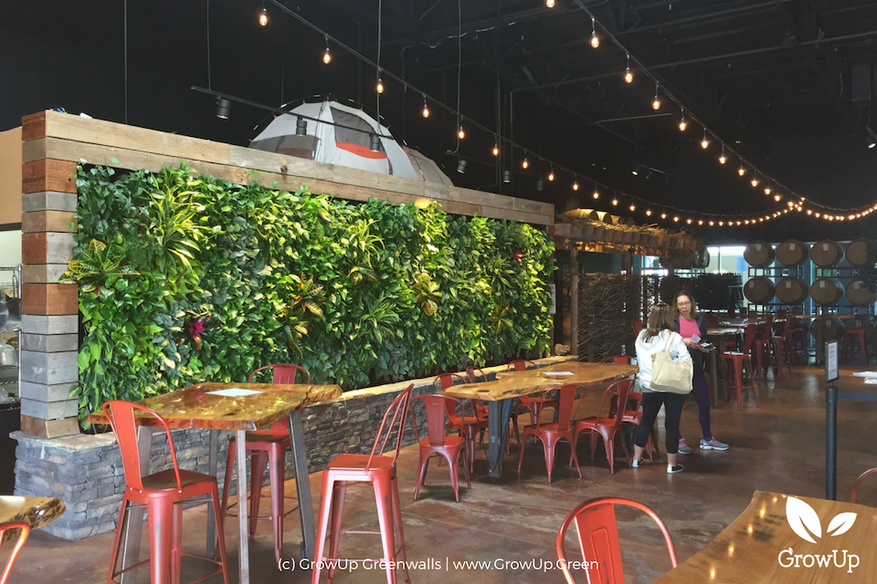 The inside of Belching Beaver brewery with a greenwall as a backdrop to the dining area