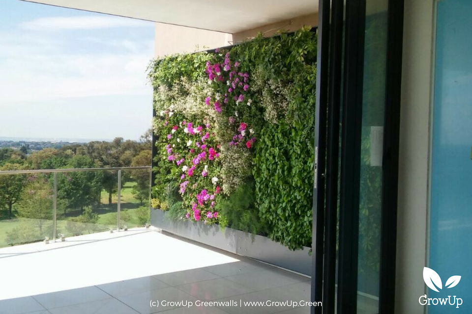An outdoor greenwall on a large balcony overlooking a view of trees