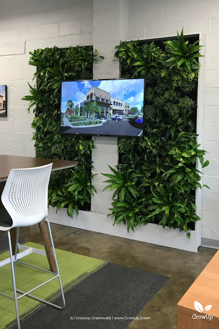 Two parallel greenwalls with a TV mounted in front of them