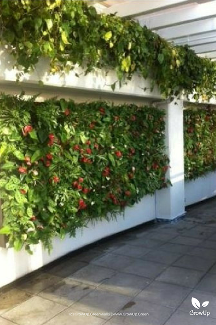 A large greenwall mounted on a wall with colors of red popping out