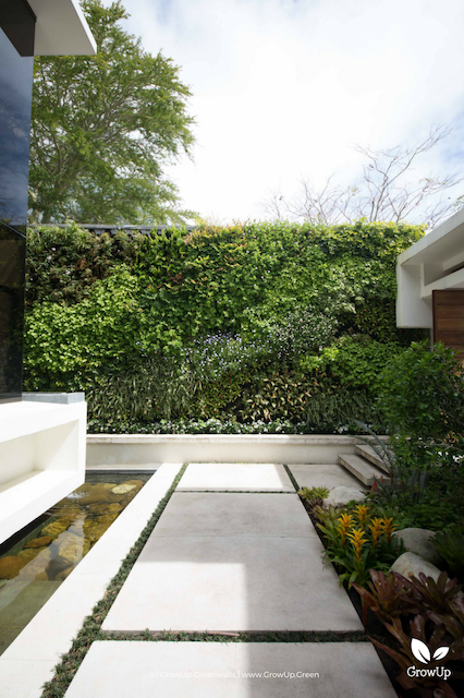A pathway outdoors leading up to a greenwall