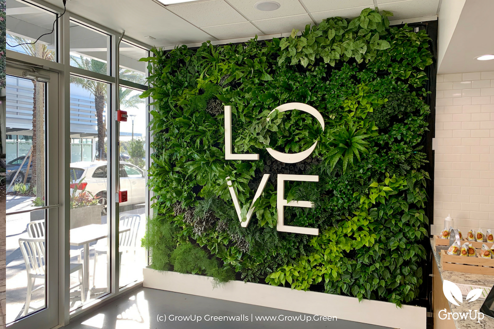 A greenwall inside of a business with the word