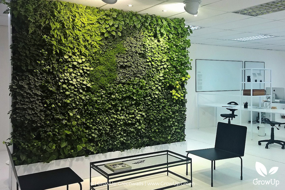 A large greenwall inside a modern office space