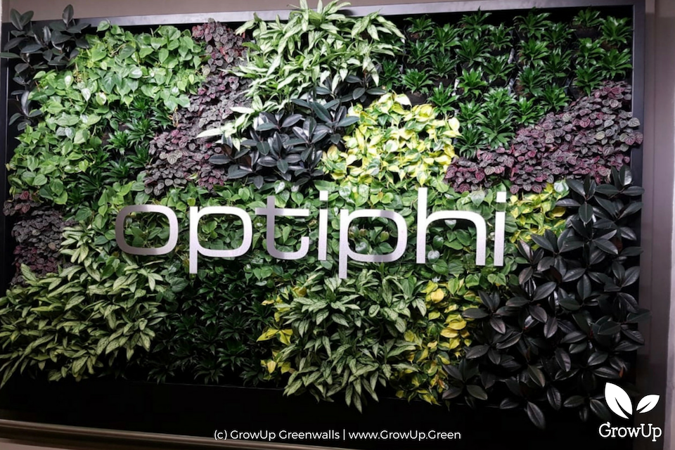 A greenwall with the company name