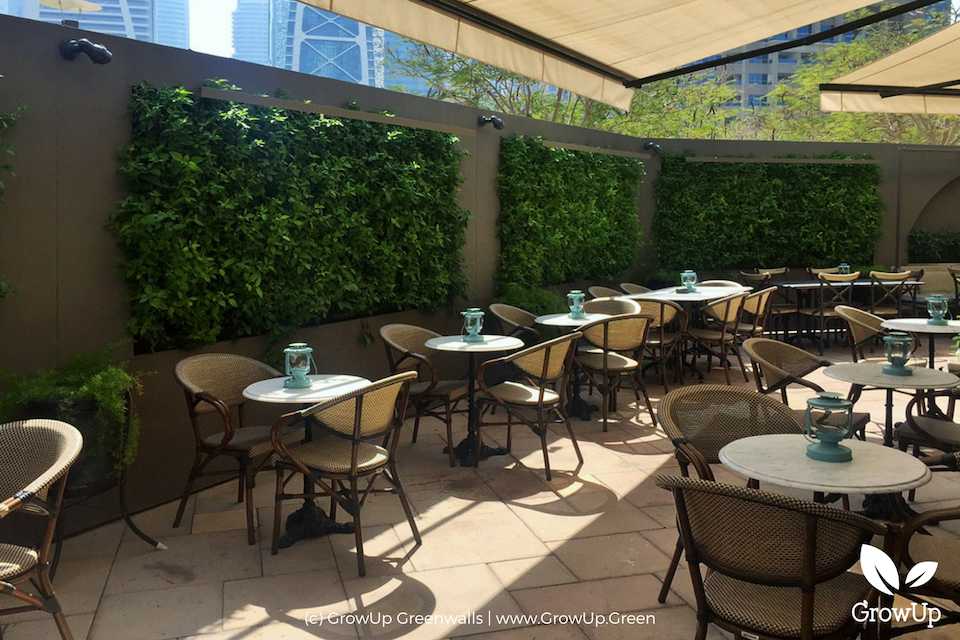 Outdoor dining area with greenwalls lined on the back of the surrounding walls