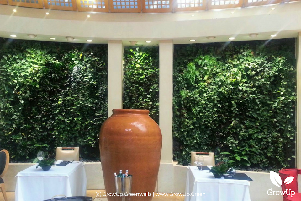 Indoor dining area with clay pot in the middle of the room and greenwalls as a backdrop