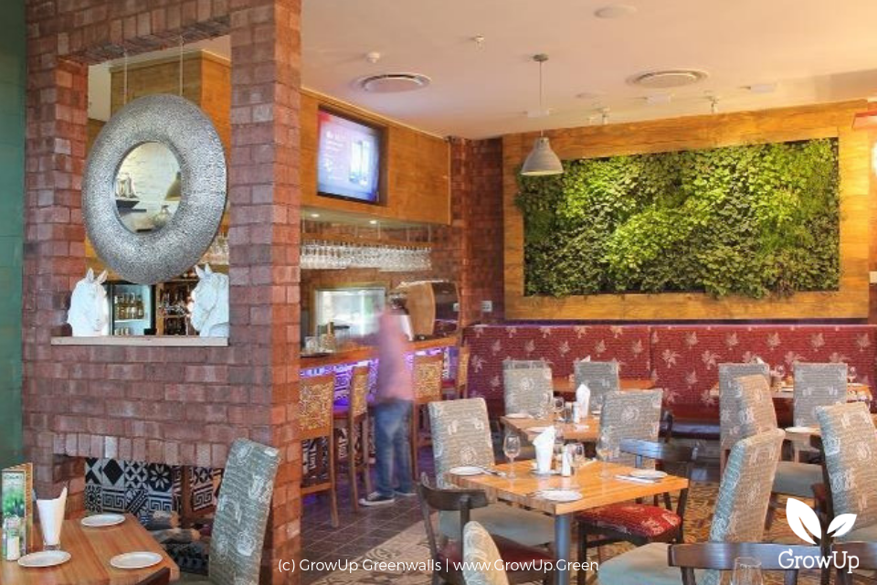 Indoor dining area in restaurant with a small greenwall mounted on the wall