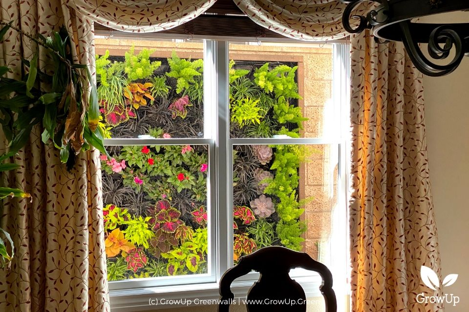 a greenwall seen through a window in the dining room