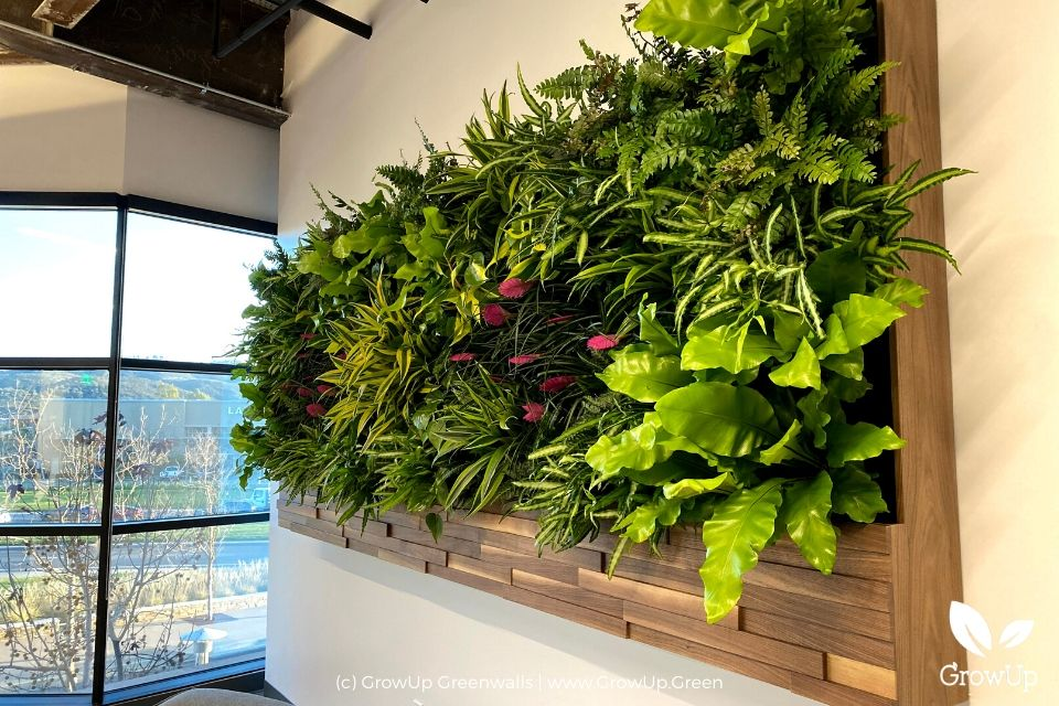 a close-up on an indoor greenwall