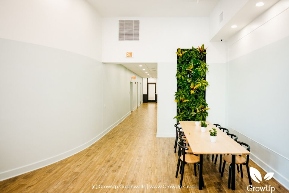 A long hallway with a table and a tall and narrow greenwall as backdrop