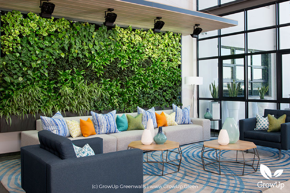 A greenwall as a backing for a modern living room with couches and coffee tables in front