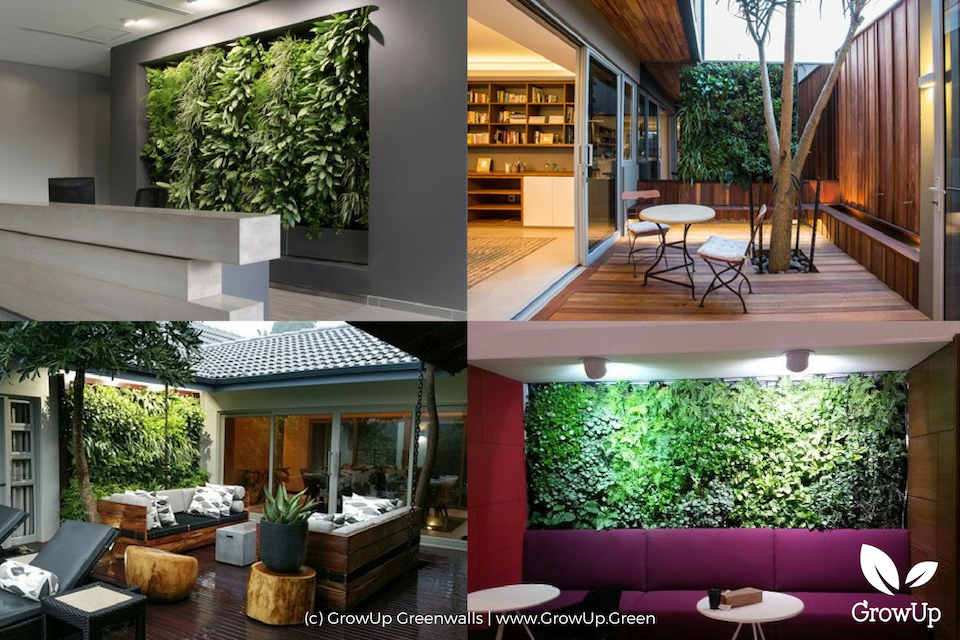a collage of different greenwalls in different types of spaces. Two indoors, two outdoors