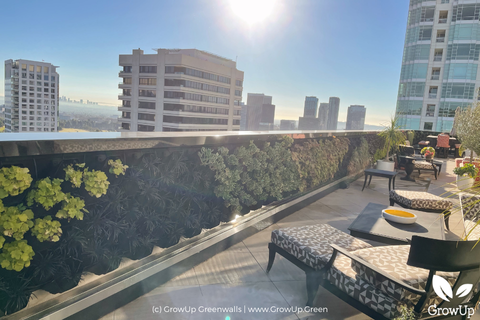 A rooftop greenwall with city view.