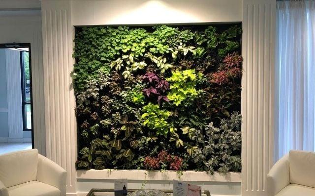 Living Wall 640x400
