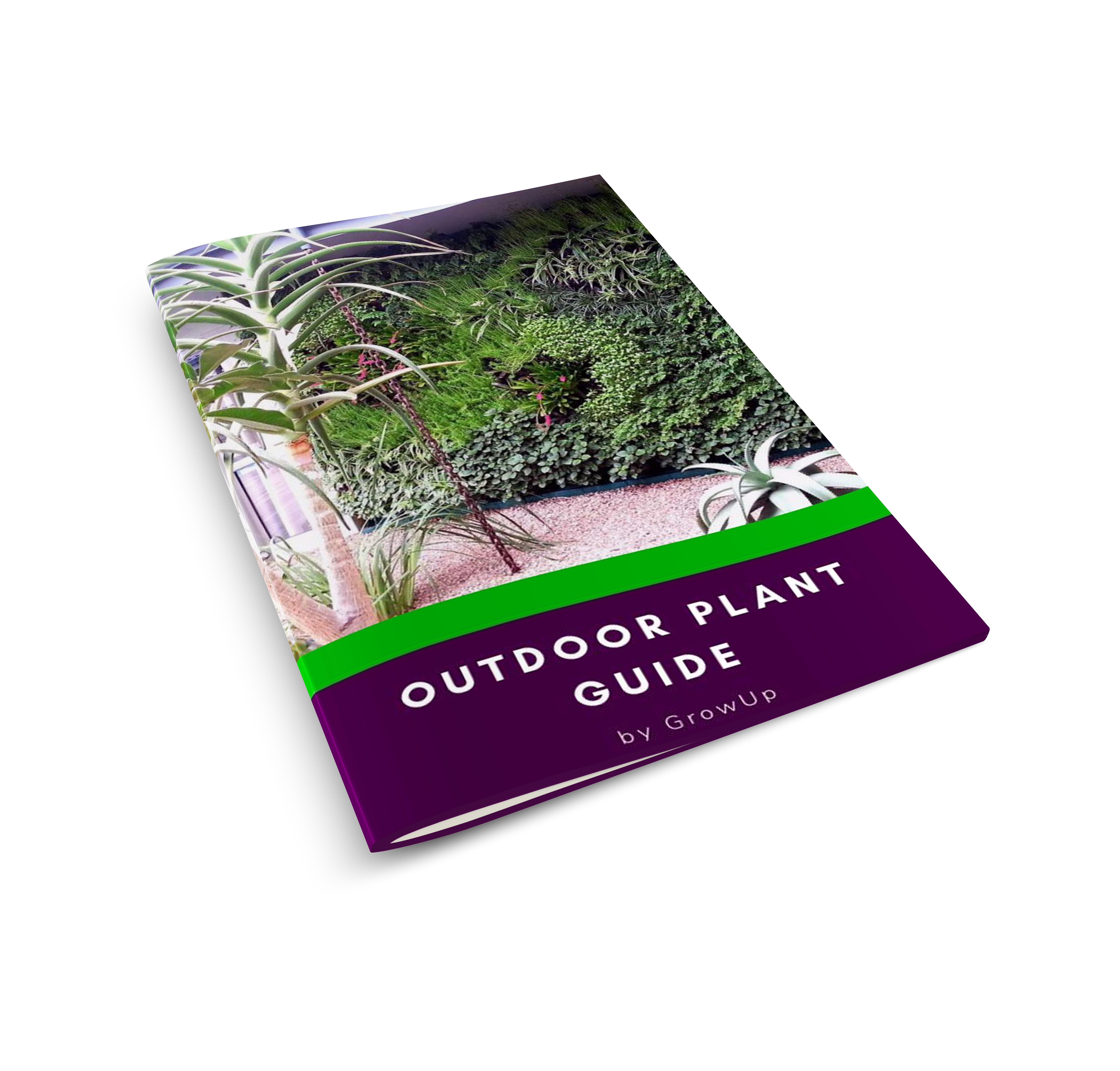Outdoor Plant Guide