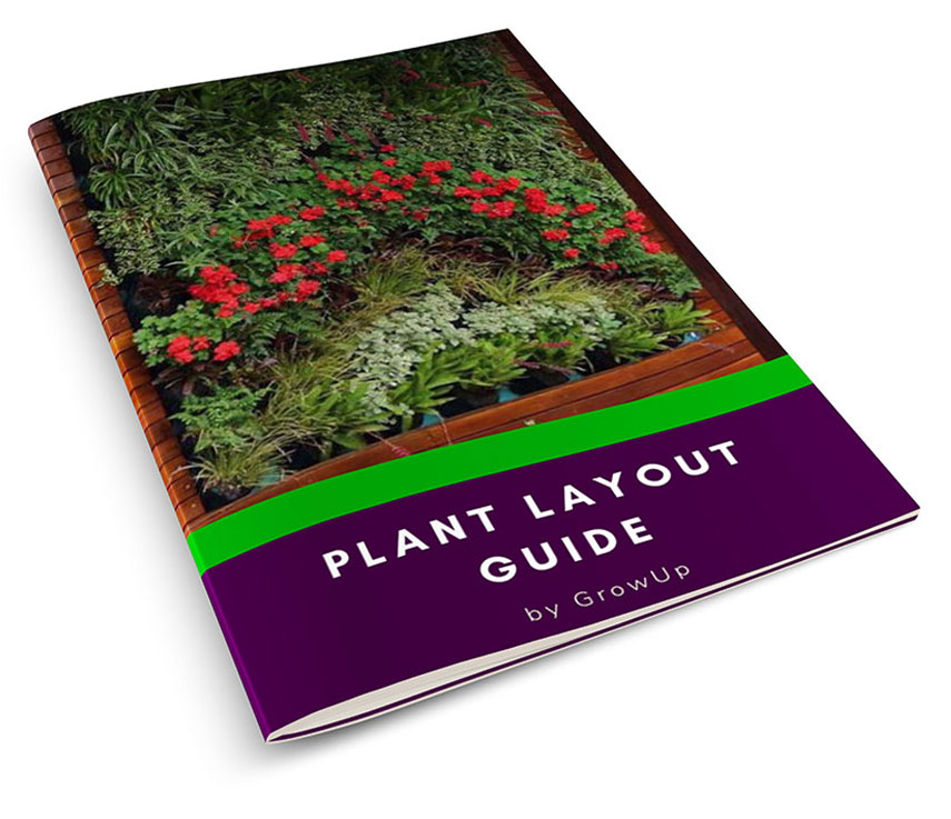 Plant-Layout-Guide