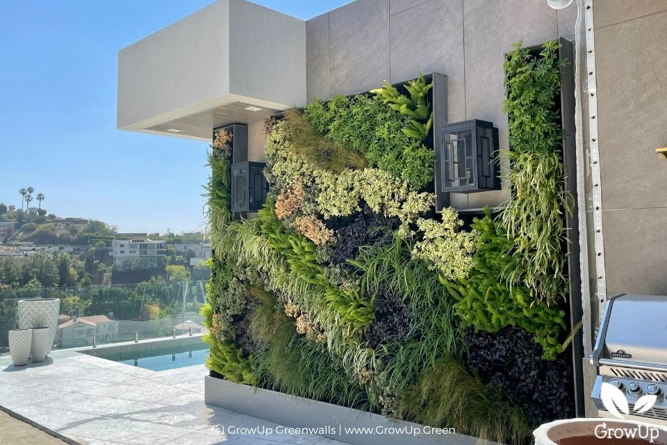 Large outdoor greenwall with a view of a pool and houses.