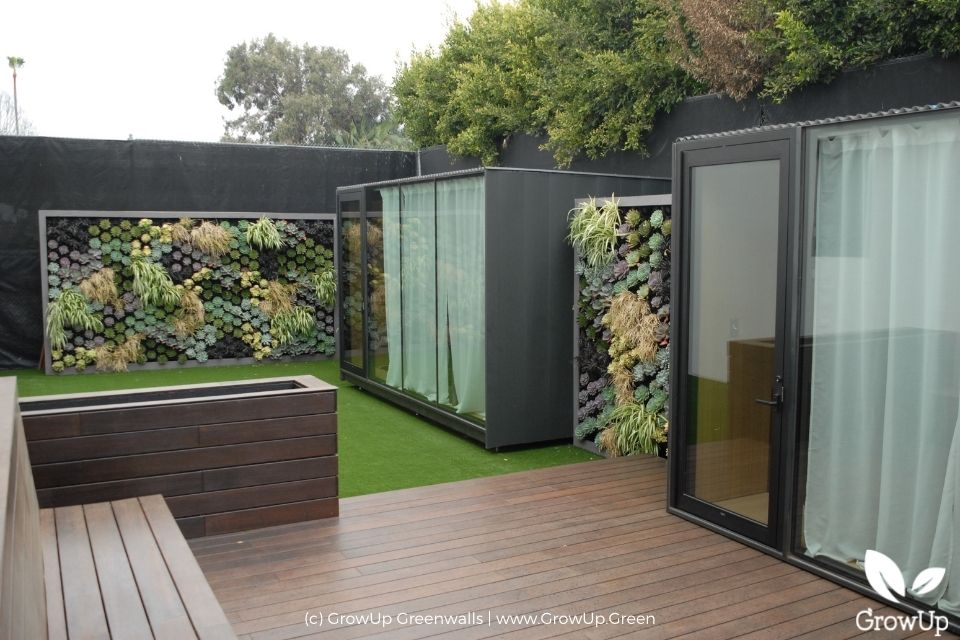 Two large outdoor greenwalls in a modern backyard.