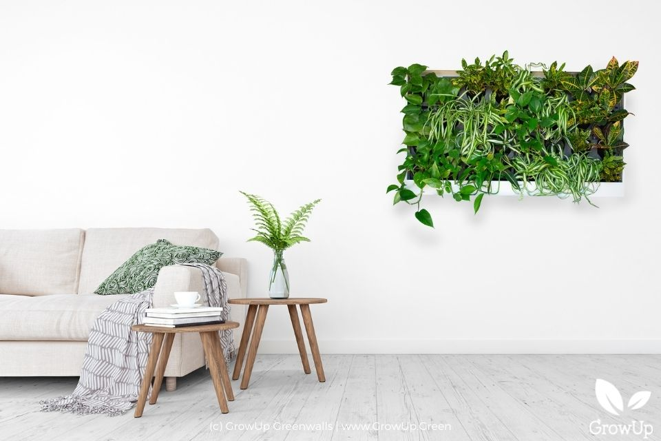 Freedom Series Designer pre-built greenwall mounted in a simple living room.