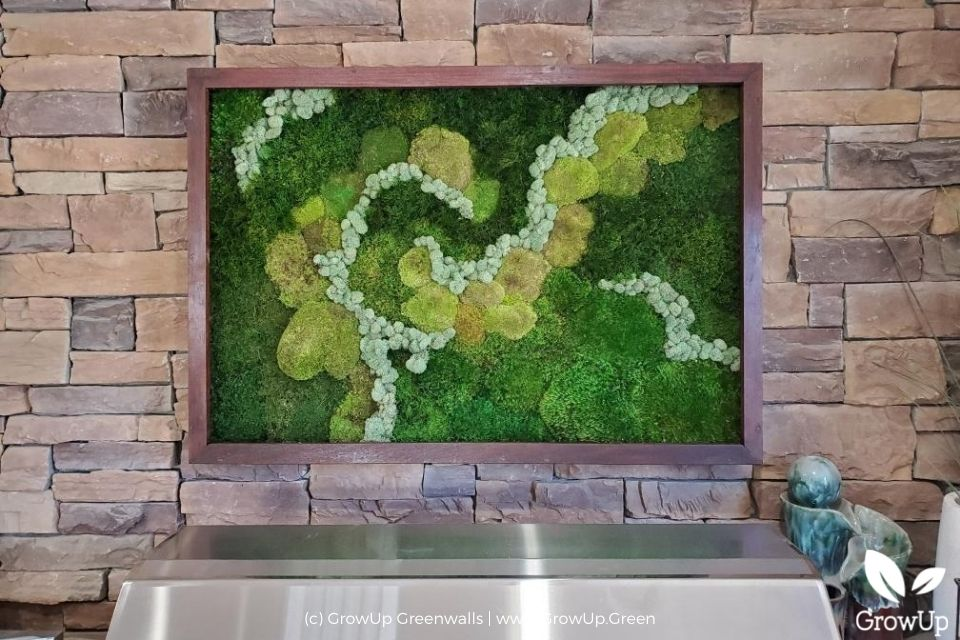 Outdoor residential moss wall.