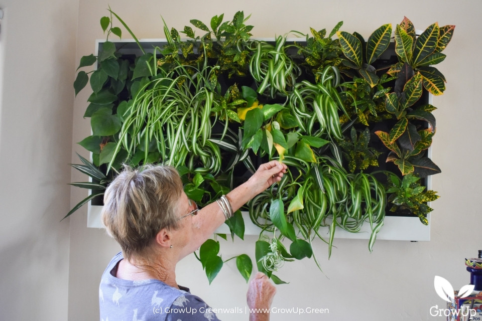 woman touching freedom series anywhere greenwall