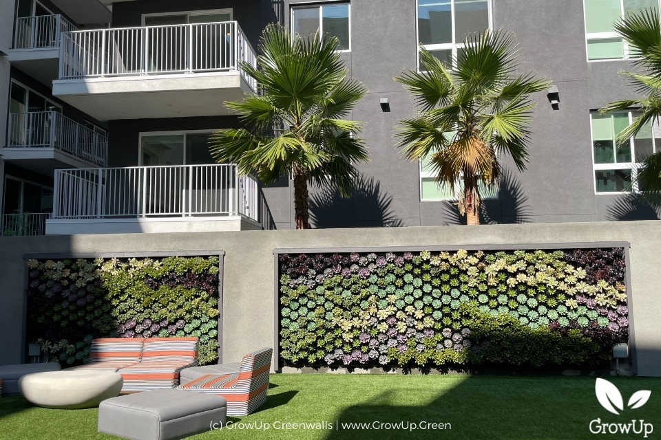 two large greenwalls in an apartment complex