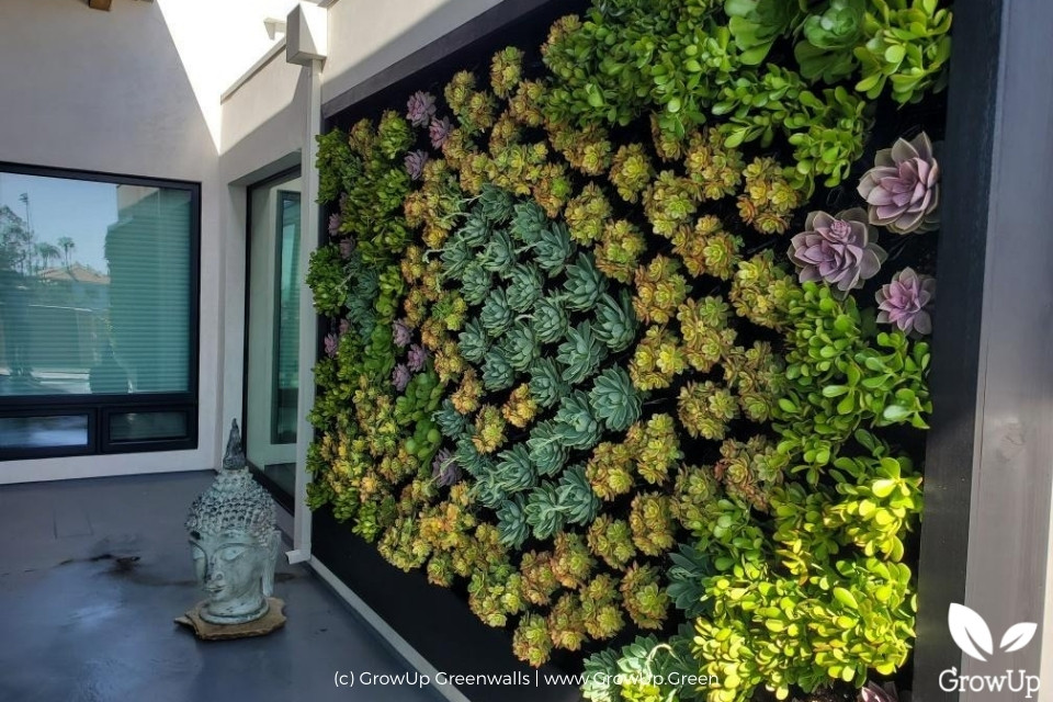 colorful outdoor succulent wall