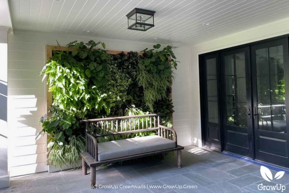 lush greenwall on a home patio