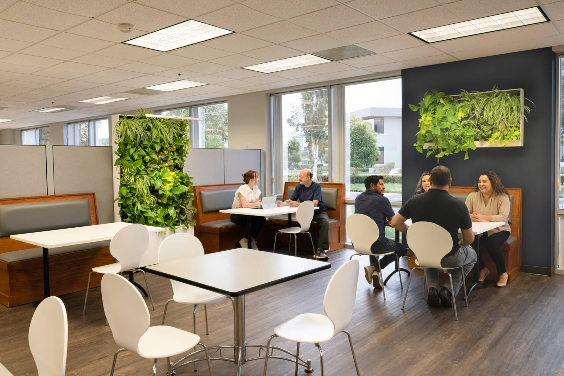 coworkers sitting with mobile divider greenwall and mounted designer greenwall