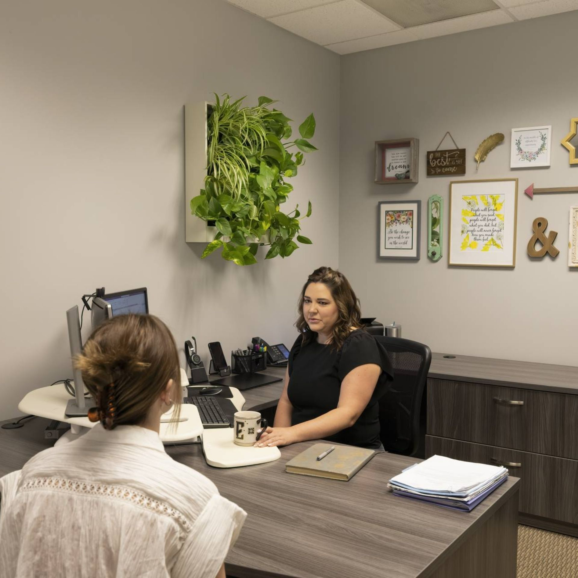 freedom series anywhere greenwall mounted in small corporate office